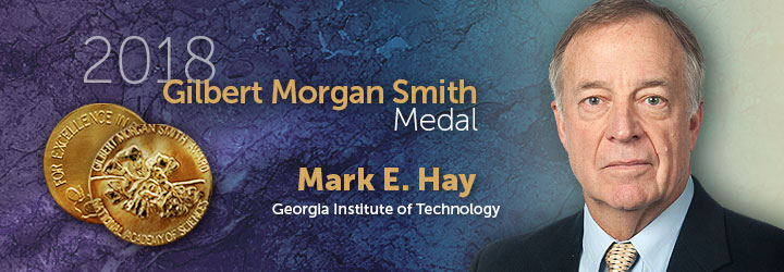 Hay, Mark 2018 Gilbert Morgan Smith Medal