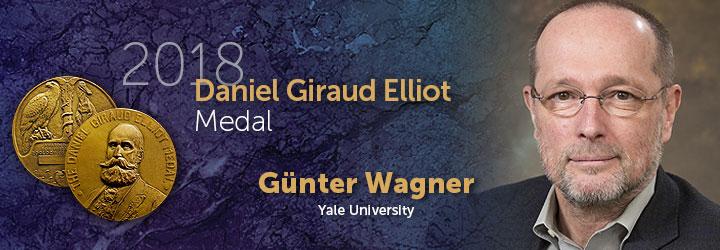 Wagner, Gunter 2018 Daniel Giraud Elliott