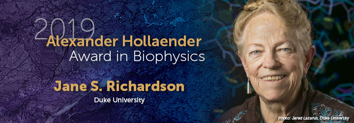 Hollaender Richardson banner
