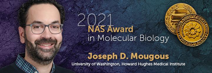 2021 Banners MolecularBiology